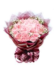 33枝粉色康乃馨,满天星点缀