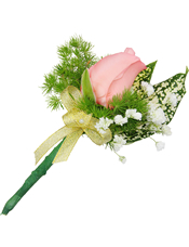 粉玫瑰1枝,星点木,满天星、蓬莱松少许。(10个起订)