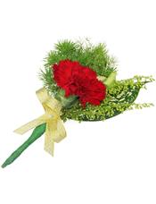 红色康乃馨1枝,星点木,黄英、蓬莱松少许。(10个起订)