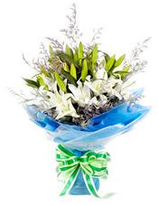 白色香水百合5枝,情人草丰满