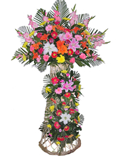 �t玫瑰、粉玫瑰、�μm、粉色香水百合、金�S色香水百合、各色太�花、散尾葵、�G�~�S�M