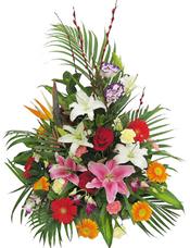 红玫瑰、粉百合、白百合、橘色太阳花、红色太阳花、黄色和粉色康乃馨、洋兰、散尾葵、绿叶间插