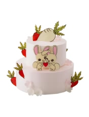 上层:小朗姆蛋糕 下层:(原味戚风蛋糕+酸奶提子夹心)+果仁蛋糕,萝兔之约