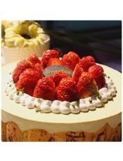 抹茶提拉米苏蛋糕