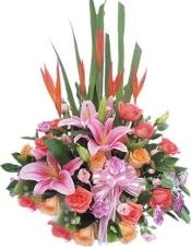 小鸟5枝,多头粉香水百合2枝,5枝香槟玫瑰,10枝粉玫瑰;粉色和紫色康乃馨、绿叶适量搭配