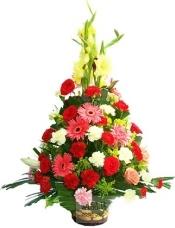 12枝红色玫瑰,2枝粉色玫瑰,12枝红色康乃馨,12枝黄色康乃馨,2枝粉色康乃馨,4枝粉色扶郎,2枝红色扶郎,3枝黄色(或粉色)剑兰,黄莺、绿叶饱满,四面观花篮。