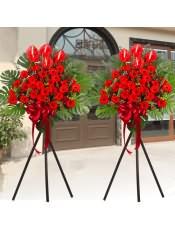 红色扶郎花、红掌、红豆、红色相思梅,搭配适量散尾葵、尤加利、栀子叶,类型 :单个花篮