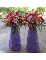 红色扶郎花、红玫瑰、粉色扶郎花、橘色扶郎花、多头粉百合,搭配适量散尾葵,类型 :单个花篮