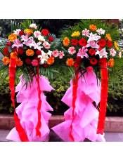 各色扶郎花、1支多头粉百合,搭配适量散尾葵,类型 :单个花篮