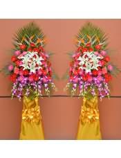 精品红色扶郎花、粉色扶郎花、玫红色扶郎花、3支多头白百合,搭配适量撒尾款、栀子叶、天堂鸟、洋兰,类型 :单个花篮