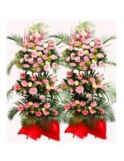 粉色扶郎花、粉色康乃馨、香槟玫瑰、粉玫瑰、搭配适量散尾葵、龟背叶、黄莺、栀子叶,类型 :单个花篮