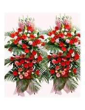 红色扶郎花、粉色扶郎花、粉色康乃馨、香槟玫瑰,搭配适量散尾葵、龟背叶、栀子叶、黄莺、粉色金鱼草,类型 :单个花篮