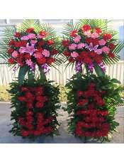 精品红色扶郎、粉色扶郎、1支多头粉百合,搭配适量散尾葵、巴西叶、龟背叶、洋兰