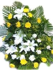 白色多头百合3枝 黄菊20枝 白玫瑰10枝 黄莺 散尾叶