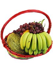 香蕉、鲜橙、葡萄、苹果、网纹瓜等时令水果。
