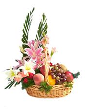 香橙,鲜桃,葡萄,苹果,猕猴桃,香蕉等时令水果。