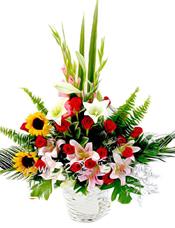 2枝向日葵(向日葵会季节性花材没有会用太阳花代替 )、3枝粉香水百合、4枝铁炮百合、16枝红玫瑰、剑兰、黄莺、绿叶