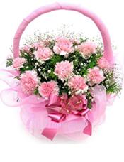 26枝粉色康乃馨,满天星,绿叶