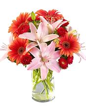 4枝多头粉色百合、橘色太阳花8支,红色小菊间插