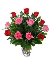6枝红玫瑰和6枝粉玫瑰,绿叶丰满。
