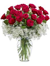 21枝红玫瑰,绿叶,满天星围绕。