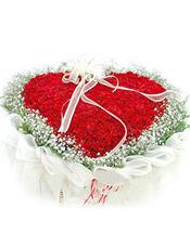 99枝红玫瑰,满天星环绕