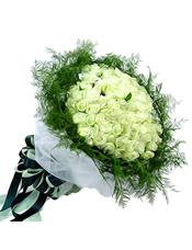 99只白玫瑰,绿叶围衬