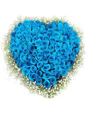 99只蓝玫瑰,满天星黄莺围绕