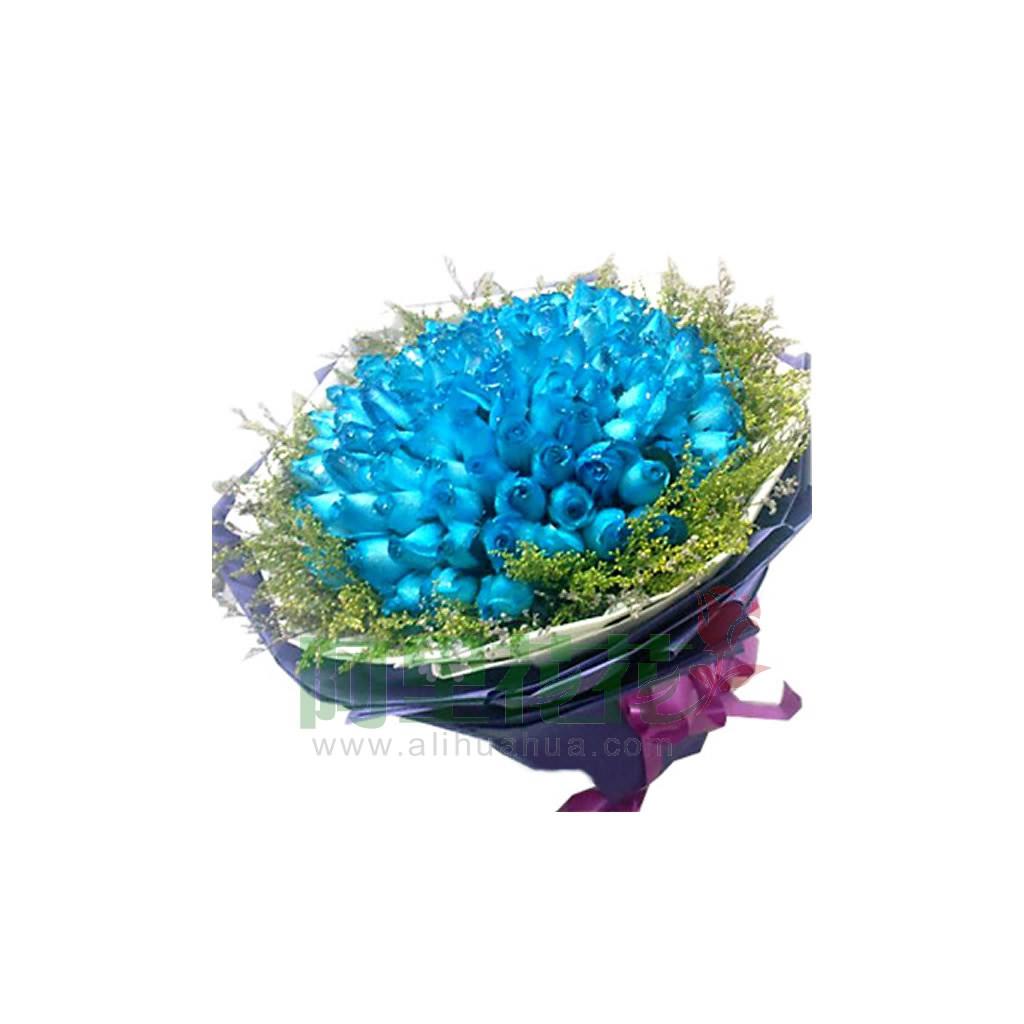 蓝玫瑰,黄莺草外围   【包装】:白色和深紫色皱纹纸