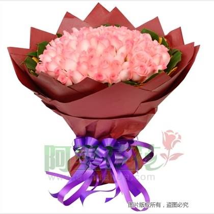 108枝玫瑰花/粉玫瑰