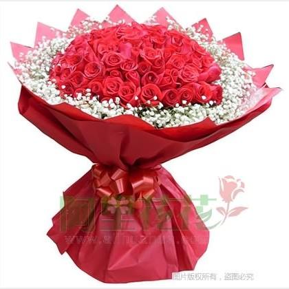 66枝玫瑰花/红玫瑰