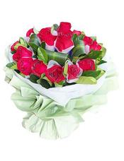 16枝红玫瑰单独包装,巴西叶,绿叶丰满