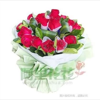 16枝玫瑰花/红玫瑰