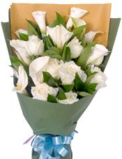 9只白玫瑰,9只马蹄莲(12月到次年5月花期),搭配栀子叶