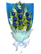 蓝玫瑰9只,7只金鱼草(也叫狮子花)搭配黄莺草