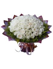 66枝白玫瑰,黄英