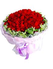 99枝红玫瑰,外围一圈高山积雪。