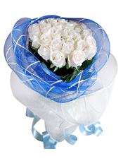 24只白玫瑰