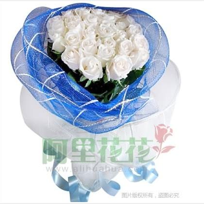 24枝玫瑰花/白玫瑰