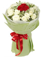 中间三支红玫瑰,外围18只白玫瑰,高山积雪间插