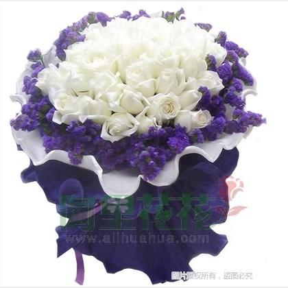 29枝玫瑰花/白玫瑰