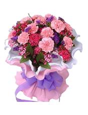 20支粉色康乃馨,石竹梅、勿忘我间插