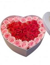 粉玫瑰、红玫瑰共36朵,点缀配材