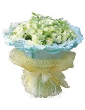 99支白玫瑰,绿叶间插。