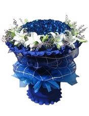 蓝玫瑰66枝,百合11枝,情人草少许