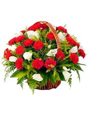 33枝红色康乃馨,白色龙胆,情人草丰满