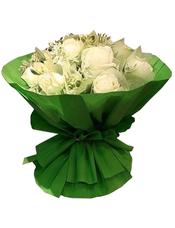 11枝白玫瑰,高山积雪丰满