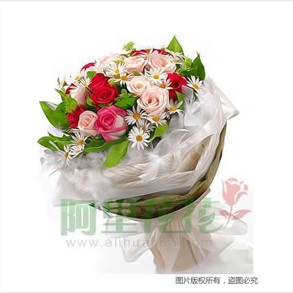 18枝玫瑰花/红玫瑰