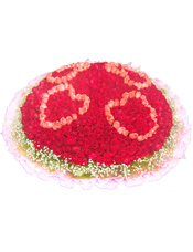 红玫瑰、粉玫瑰共999枝,满天星环绕