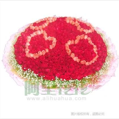999枝玫瑰花/红玫瑰